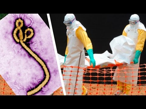Ebola Outbreak Still Accelerating In West Africa (UPDATE)