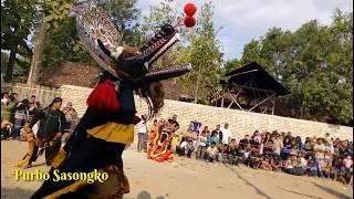 Jaranan Pegon Krido Manggolo Live Wringinanom