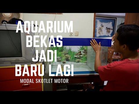 rombak-aquarium-!!!-dari-bekas-jadi-baru-lagi