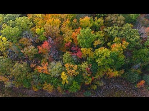 Autumn in the Lehigh Valley