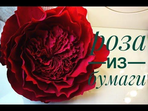 видео: Пионовидная роза из бумаги.