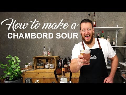 Chambord Sour Cocktail Recipe - DELICIOUS DRINKS + BLOOPERS!