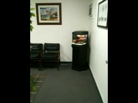 Just Smog Check In Huntington Beach Office Video