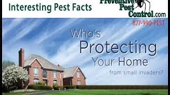Interesting Pest Control Facts