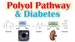 hqdefault - Aldose Reductase Inhibitors In Diabetic Neuropathy