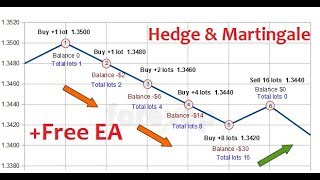Free Forex Tools : How To setup Hedge & Martingale EA