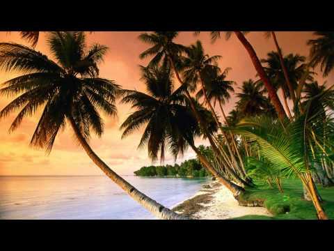 Carlos Campos y Su Orquesta - Danzon zacatlan (Instrumental)