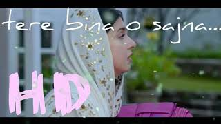 Tere bina o sajna new sad song 2018 latest in hindi