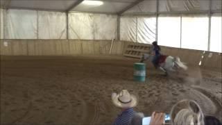 5° Tappa campionato regionale Sef Italia - Barrel cat. amatoriale - Golden Horse