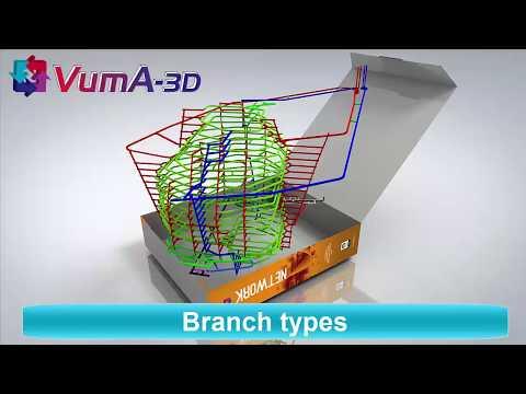 VUMA3D-network 2018 Branch types 3D Mine Ventilation simulation software www.vuma3d.com