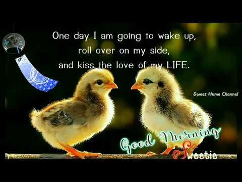 Sunday good morning photo image download hd love 2020