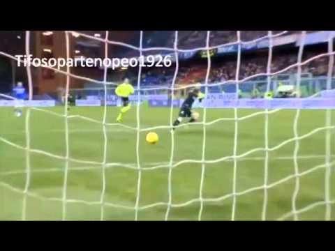 Antonio Di Natale tutti i gol 2012/2013