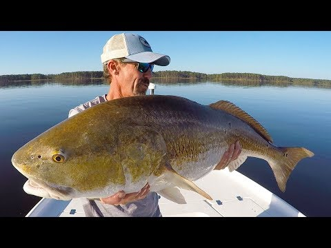 Neuse River Bull Drum Fishing (With Tips And Techniques)