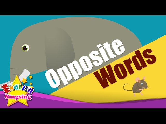 Adjectives - Opposite