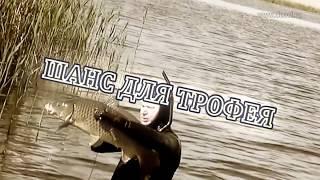 Рыбалка в Астрахани - Цена поездки