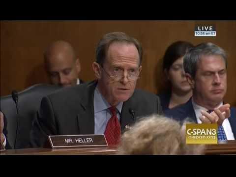 Pat Toomey Tears Apart Wells Fargo CEO John Stumpf