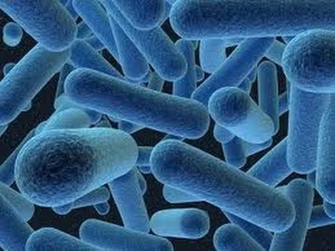 Антибиотики при простатите: список препаратов, схема