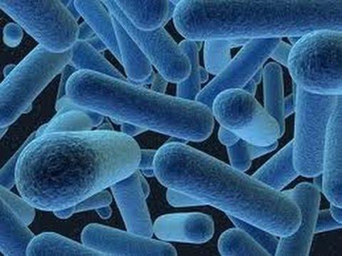 Антибиотик ципролет -