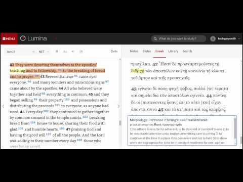 Lumina   Acts 242   Greek