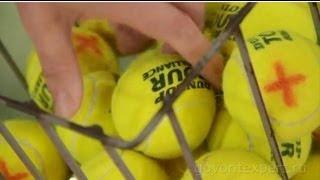 Учимся играть в теннис. Советы по экономии стоимости обучения. Говорит ЭКСПЕРТ.