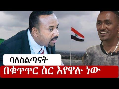 Ethiopia: ሰበር ዜና - የኢትዮታይምስ የዕለቱ ዜና | Daily Ethiopian News | ሰበር መረጃ