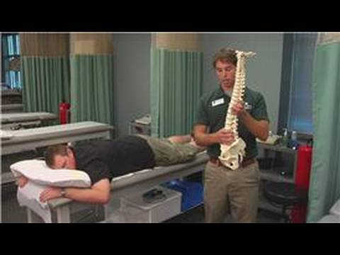 Physical Therapy Tips : Physical Therapy Techniques for a Bulging Disc