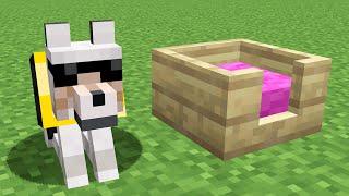 Como educar a tu perro en Minecraft