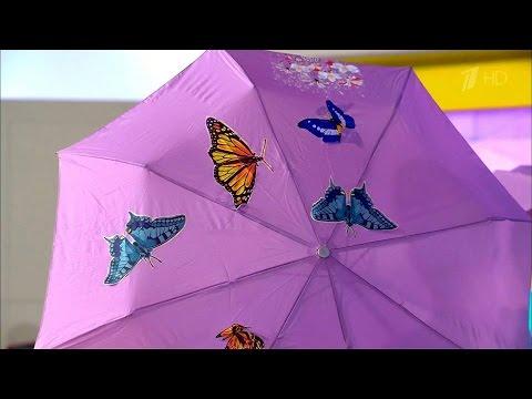 Жить здорово! Как обновить старый зонт. (02.09.2016)