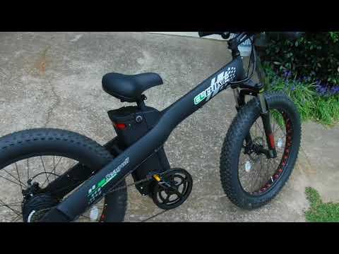 EGO Bike Seagull 500W 48V - Initial Look / Review / Thoughts - eBike Electric Bike