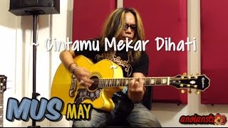 Mus MAY - Cintamu Mekar Dihati