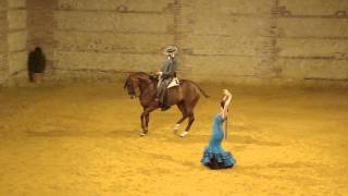 Horse and rider with flamenco dancer in Cordoba, Spain