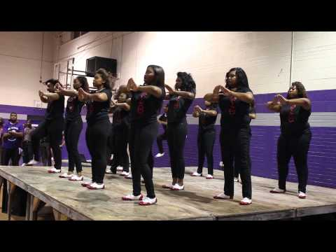 wiley college meet the greeks gsu