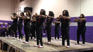 Wiley College Meet the Greeks 2014 Delta Sigma Theta