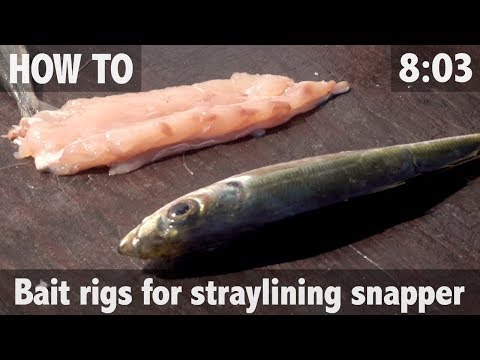 Ultimate Fishing TV - STRAYLINING FOR SNAPPER - BAIT RIGS