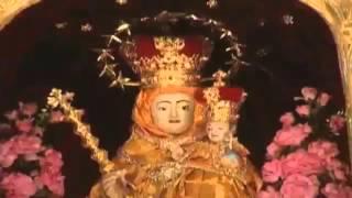 Vailankanni Shrine Basilica feast 2015 Special Songs