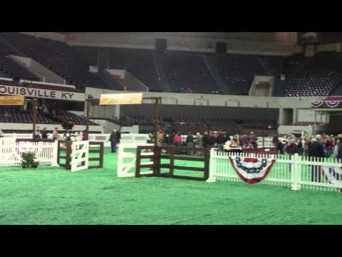 Beef Show, Freedom Hall East - November 13, 2016