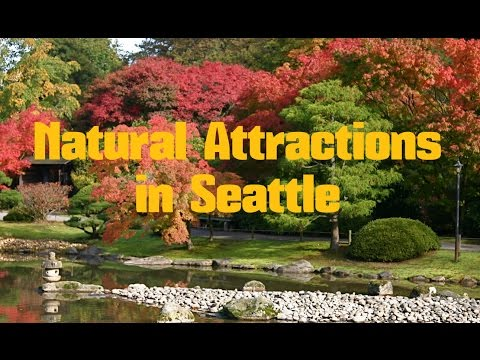 TOP 14. Parks and Natural Attractions in Seattle - Travel State Washington