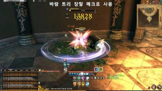 [SJred]Blade and Soul 2016 Macro 활용 영상.