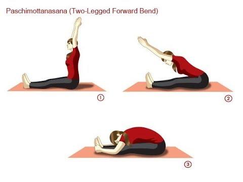 Paschimottanasana || Seated Forward Bend Journal Pose