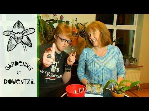 Giveaway Draw - 3 winners of Journal of an Irish Garden