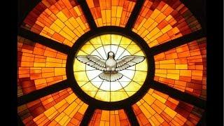 Live - Grupo de Oração  - Tema: Viver Segundo o Espírito  - GL 5,13-25