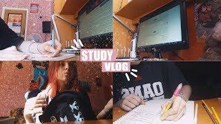 STUDY VLOG   Первый день в онлайн-школе (домашнее обучение)
