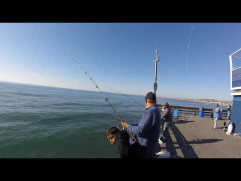 fishing newprot pier