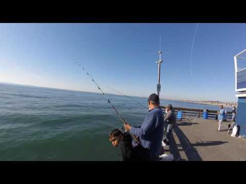 Fishing Newport Pier