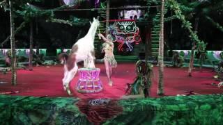 Королевский цирк Гии Эрадзе в Казани