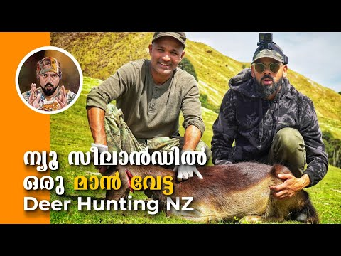Deer hunting NZ,Best hunting video malayalam, Wild turkey hunting, hunting NZ