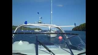 A pair of Scaregull seagull deterrents in action on a luxury cruiser