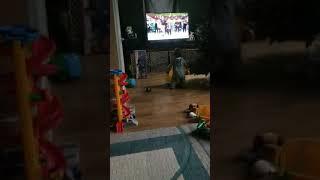 #Babyshark #Jayden #Dancevideo #worldstarhiphop