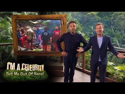 Dec Gets Confused Between Holly Willoughby and Ant! | I'm A Celebrity...Get Me Out Of Here!