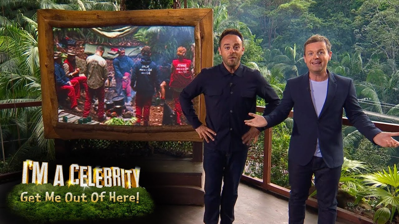 Everyone's getting along on I'm a Celebrity and it's ...